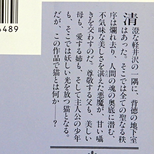 宮本輝『避暑地の猫』