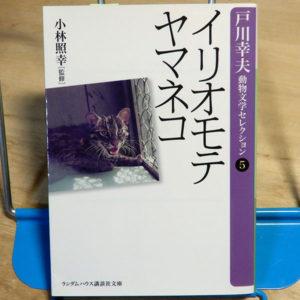 戸川幸夫『イリオモテヤマネコ』