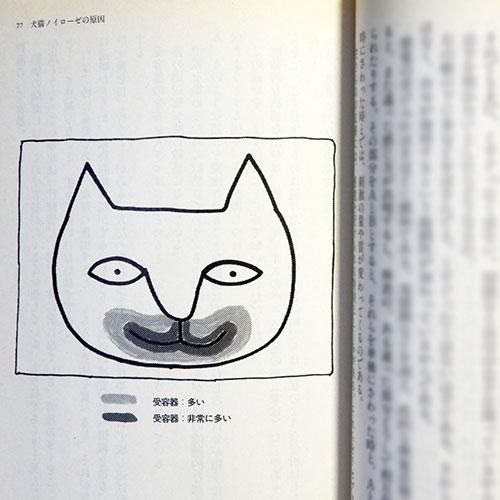 畑正憲『ムツゴロウの動物交際術』