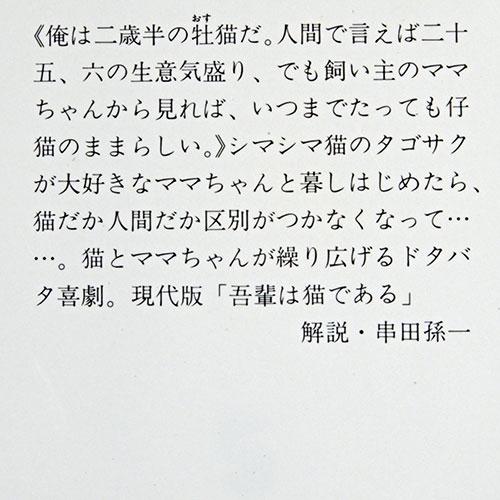 見尾田瑞穂『猫がタンゴを踊るとき』