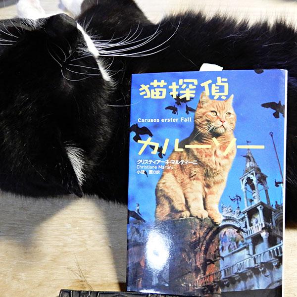 マルティーニ『猫探偵カルーソー』