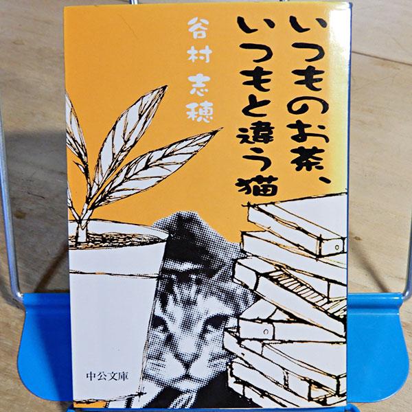谷村志穂『いつものお茶、いつもと違う猫』