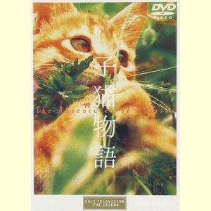 映画『子猫物語』