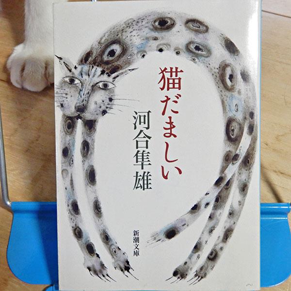 河合隼雄『猫だましい』