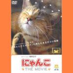 DVD『にゃんこ THE MOVIE』