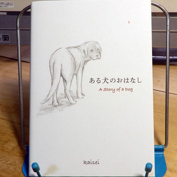 kaisei『ある犬のおはなし』
