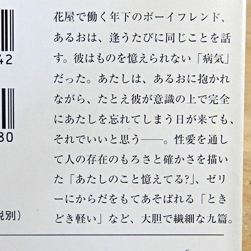 内田春菊『ときどき軽い』『黒い仔猫』