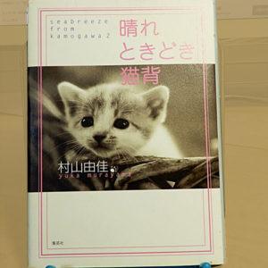 村山由佳『晴れ ときどき猫背』