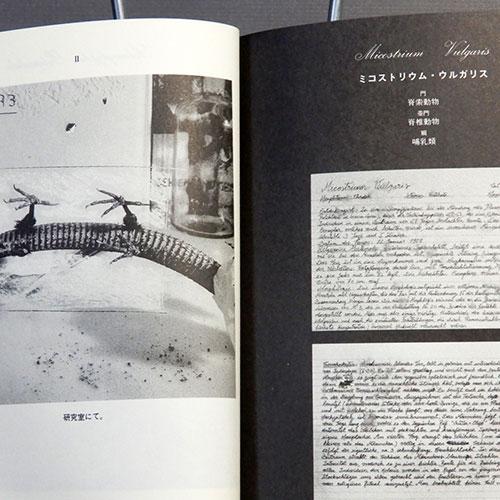 フォンクベルタ/フォルミゲーラ『秘密の動物誌』