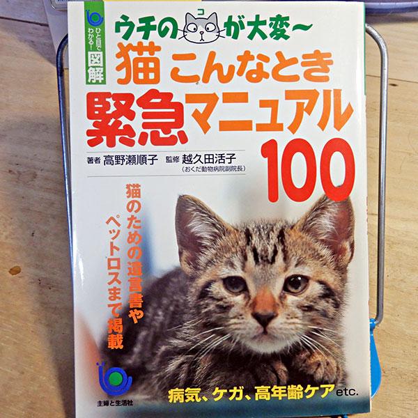 ひと目でわかる!図解『猫 こんなとき 緊急マニュアル100』