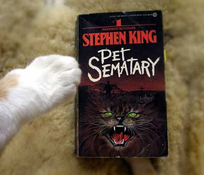 キング『ペット・セマタリー』
