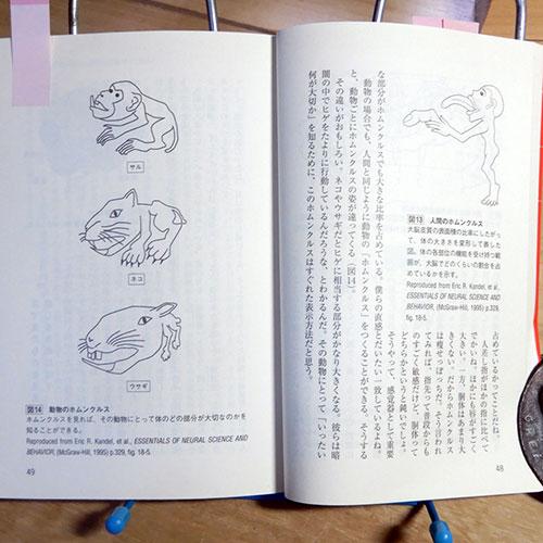 池谷裕二『進化しすぎた脳』