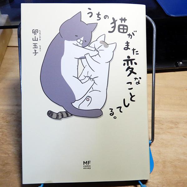 卵山玉子『うちの猫がまた変なことしてる。』