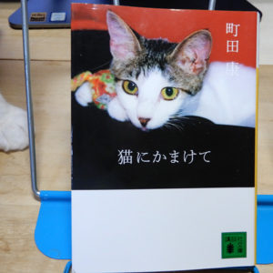 町田康『猫にかまけて』