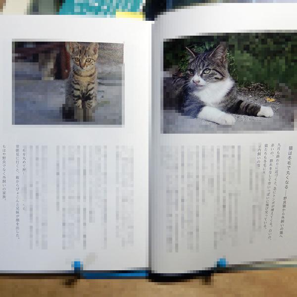 高橋のら『猫にGPSをつけてみた』