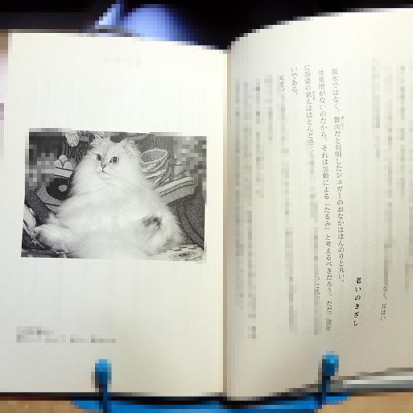 宇都宮直子『猫と私の「老い支度」』