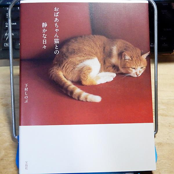 下村しのぶ『おばあちゃん猫との静かな日々』