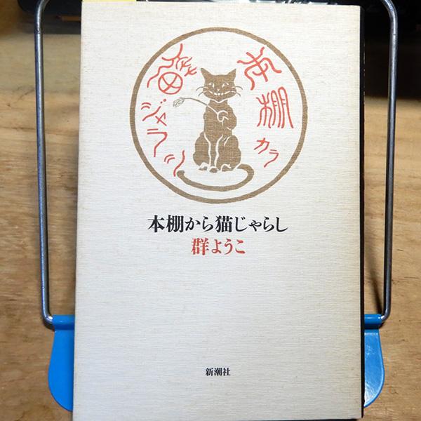 群ようこ『本棚から猫じゃらし』