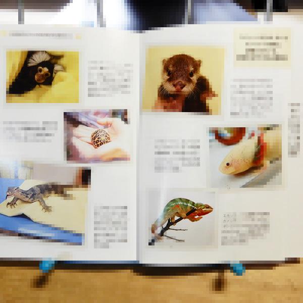 田向健一『珍獣の医学』