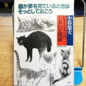 小暮規夫『猫が夢を見ているときはそっとしておこう』