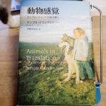 テンプル・グランディン『動物感覚』
