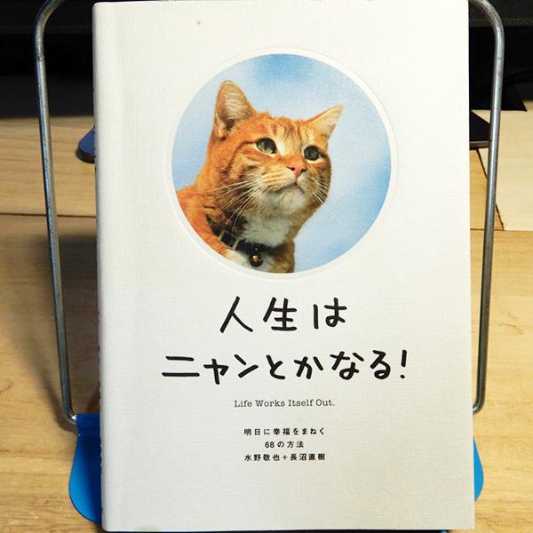 水野敬也・長沼直樹『人生はニャンとかなる!』