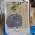 ウェルズ『通い猫アルフィーのはつ恋』