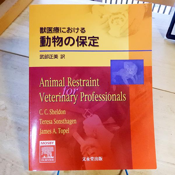 獣医療における『動物の保定』