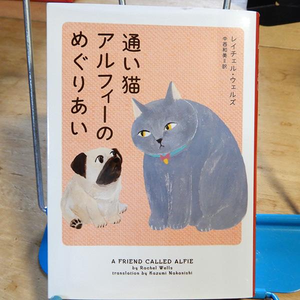 ウェルズ『通い猫アルフィーのめぐりあい』