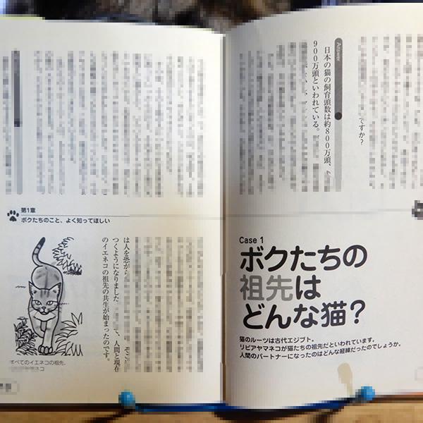 小暮規夫、佐藤省一『猫の言い分』