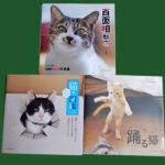 『百面相ねこ』『踊る猫』『猫あるある図鑑』